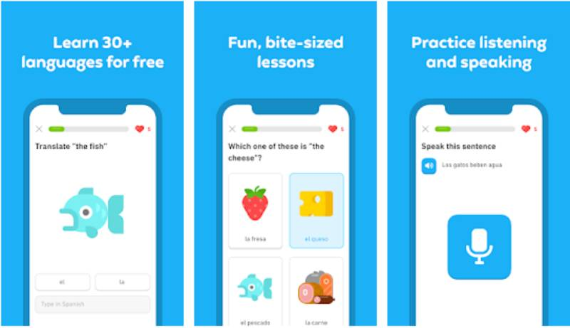 This image has an empty alt attribute; its file name is download-duolingo-mod-apk.jpg