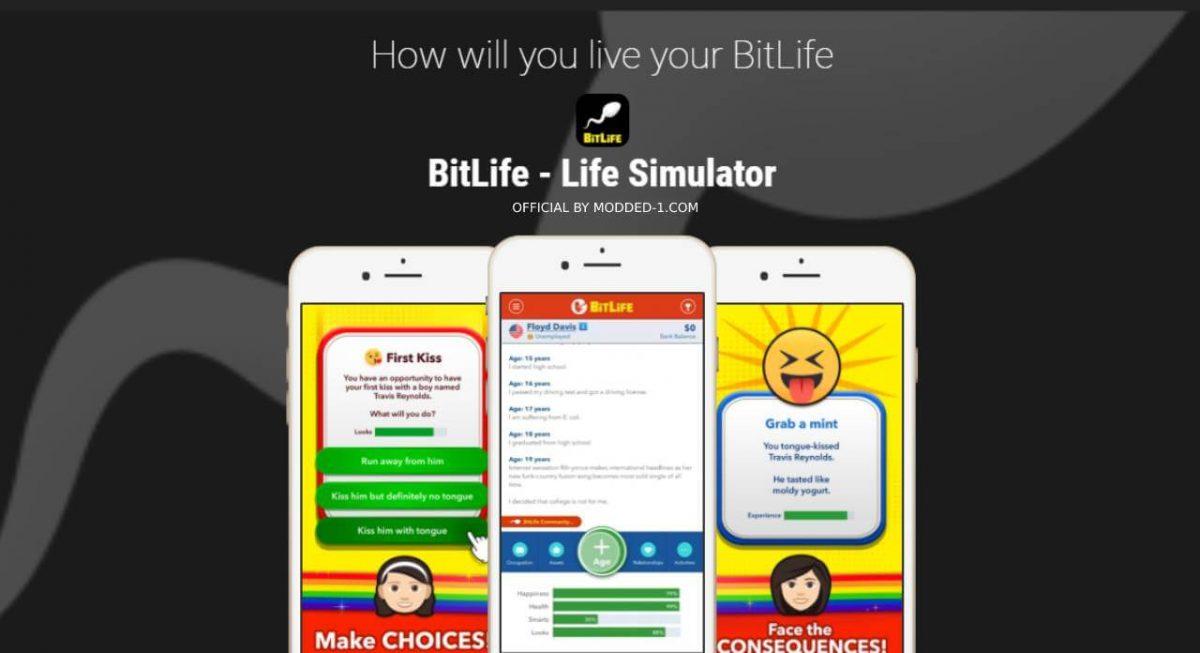 bitlife cover