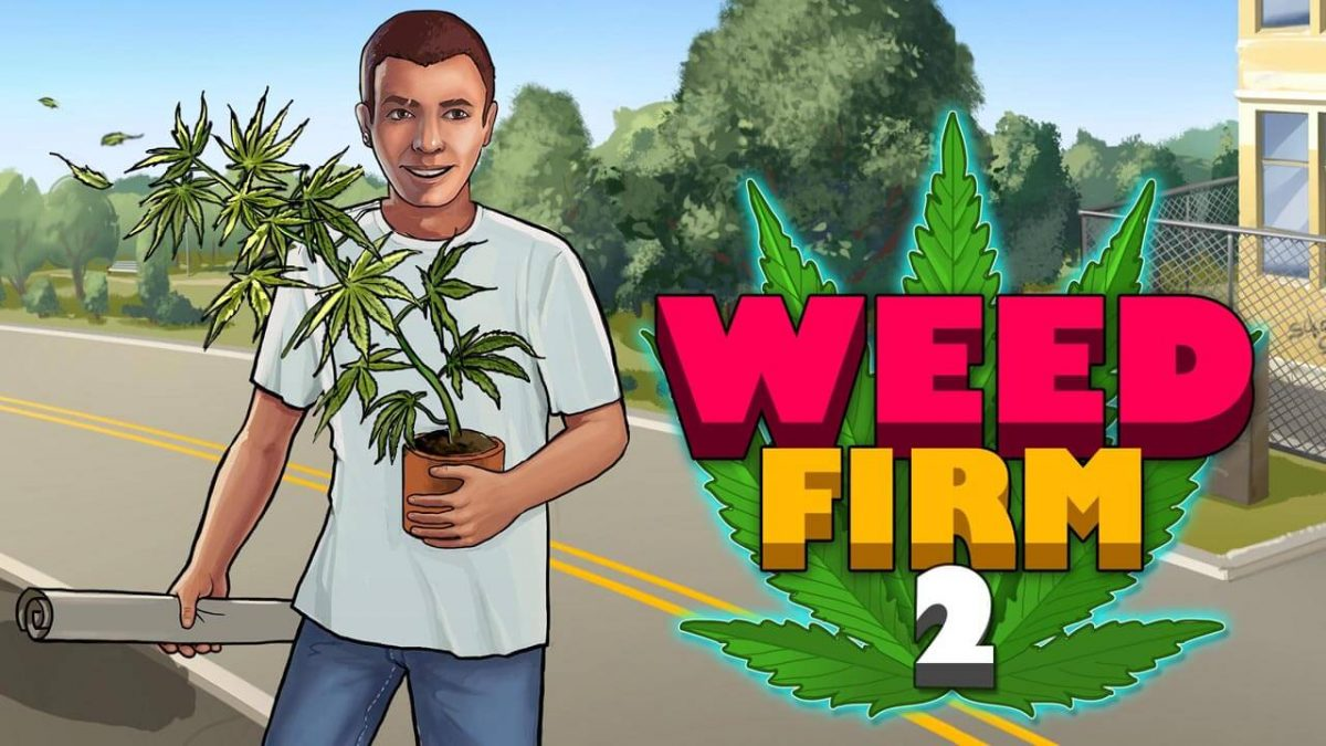 cover weed firm 2