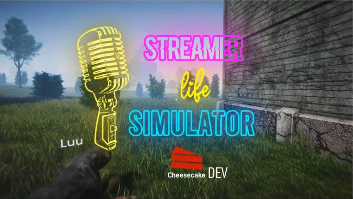 cover streamer life simulator